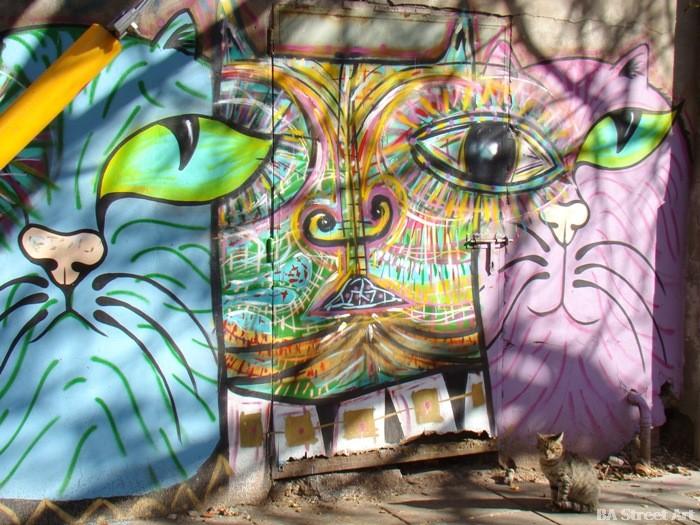 mondo lila interview buenos aires street art buenosairesstreetart.com graffiti tour buenos aires