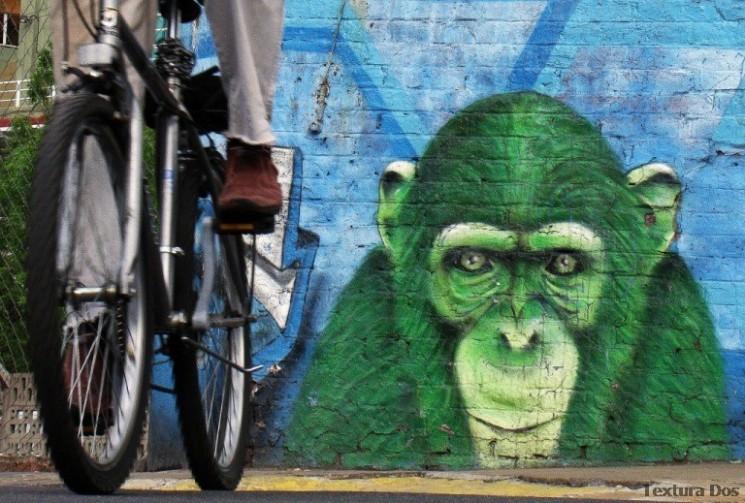 ice graffiti buenos aires street art tour © buenosairesstreetart.com