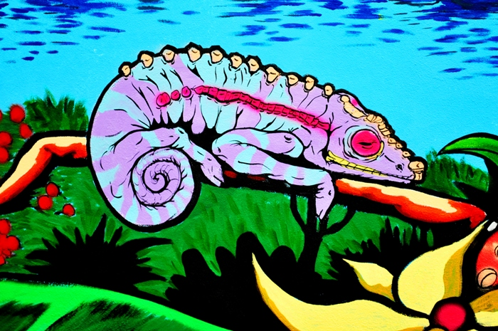 rufo buenos aires street artista chameleon buenosairesstreetart.com BA Street Art Tours