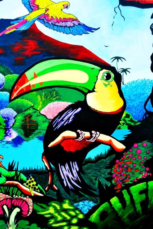 rufo buenos aires street artist toucan buenosairesstreetart.com BA Street Art Tours