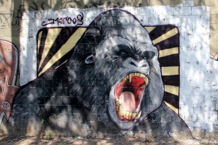 marcos street art buenos aires graffiti tour murales buenosairesstreetart.com